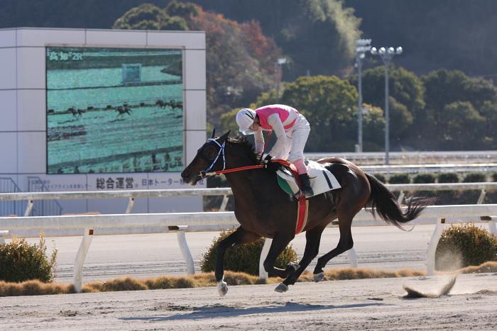 2010年1月1日(金) 高知競馬 2R 門松特別 E8_a0077663_17551598.jpg