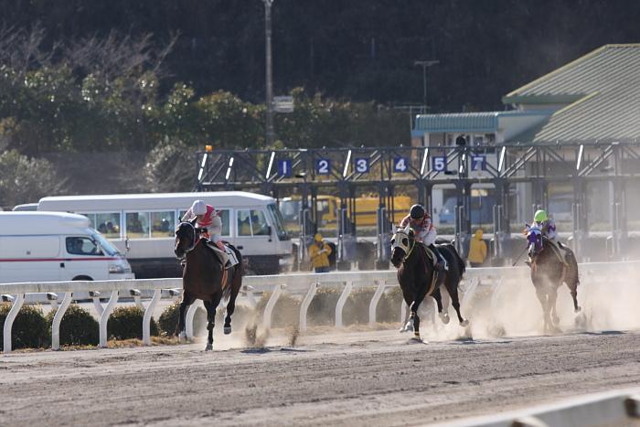 2010年1月1日(金) 高知競馬 2R 門松特別 E8_a0077663_17595796.jpg