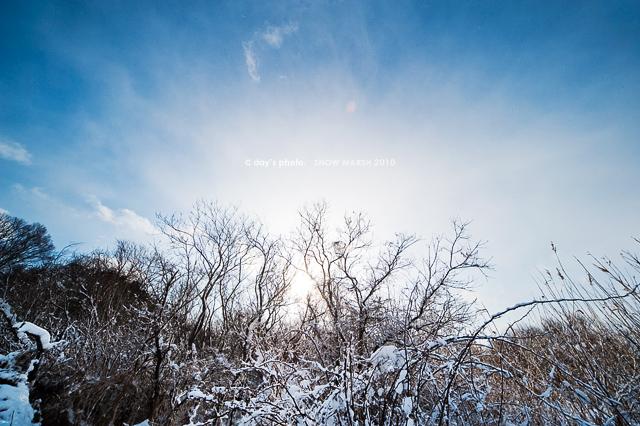 雪景 #04_e0117517_2024499.jpg