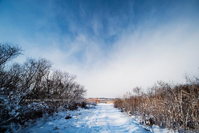雪景 #04_e0117517_20261257.jpg