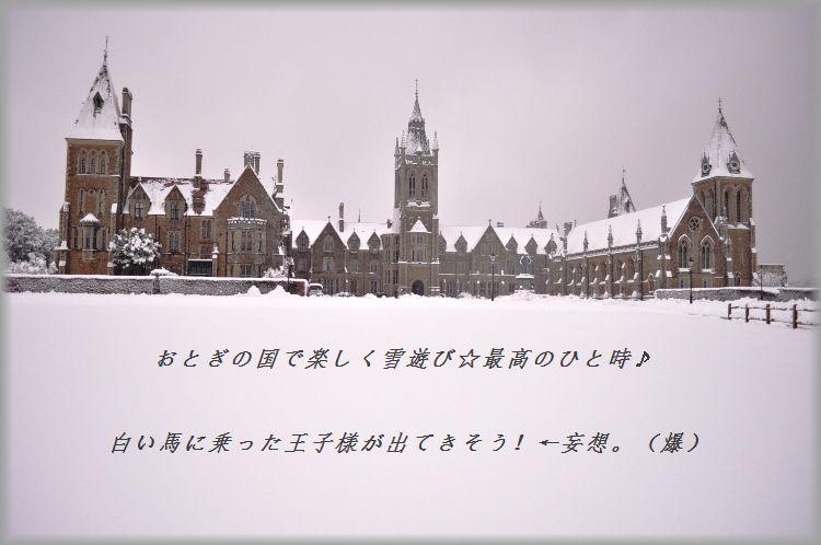 d0104926_1493549.jpg