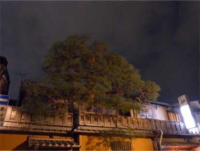完全個室日本橋のヘアサロン艶出専科スタッフが行くお正月の京都花見小路