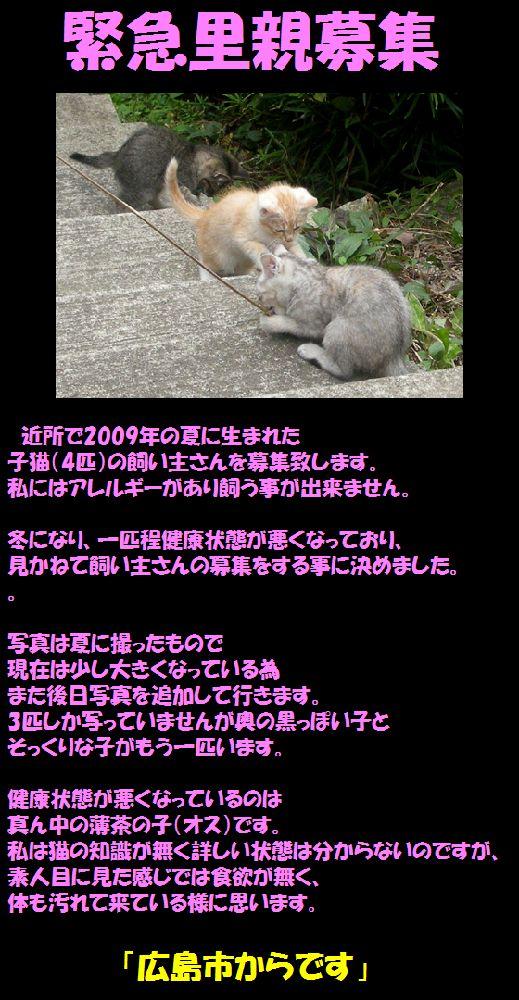 f0197682_1056418.jpg