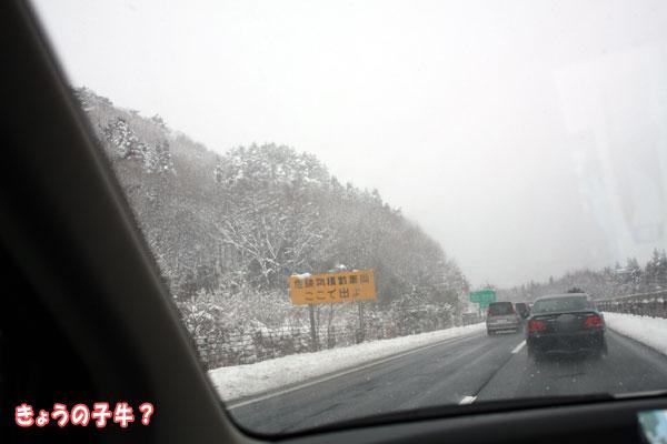 今年の遊び初めはやっぱり雪遊び!? in水上_f0203423_14455917.jpg