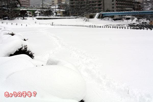 今年の遊び初めはやっぱり雪遊び!? in水上_f0203423_14461588.jpg
