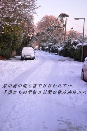 d0104926_1211843.jpg