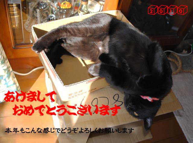 b0029777_1301059.jpg
