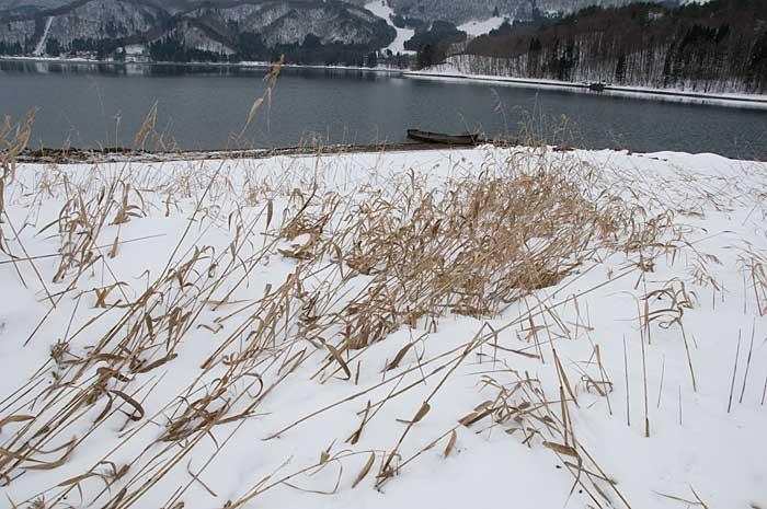 青木湖_c0085877_74247.jpg