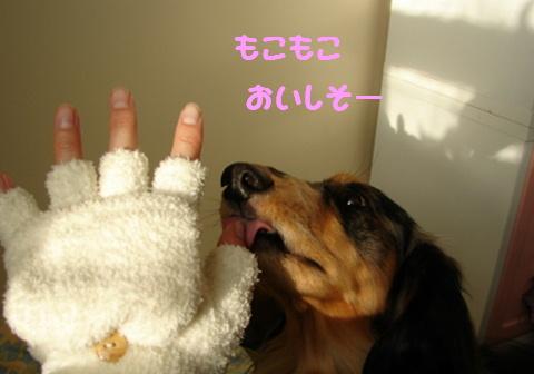 真冬のお散歩アイテム_f0195891_17101547.jpg