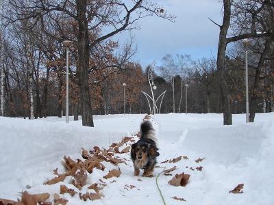 真冬のお散歩アイテム_f0195891_17113642.jpg