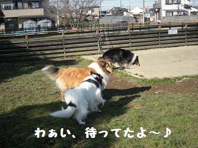 f0081100_011191.jpg