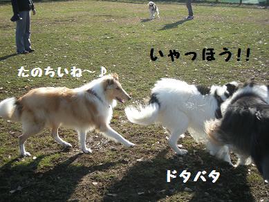 f0081100_085431.jpg