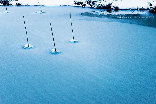 雪景 #06_e0117517_19341377.jpg