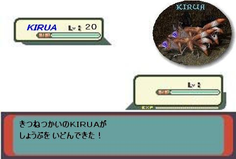 f0101845_912223.jpg
