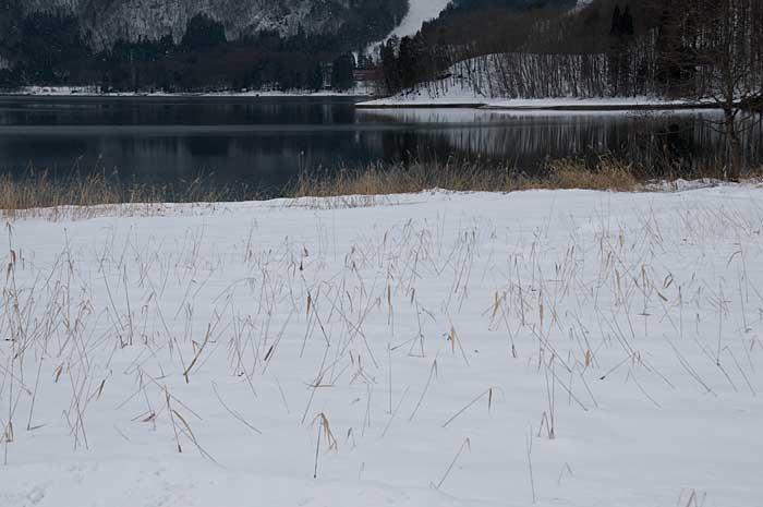 青木湖2_c0085877_732012.jpg