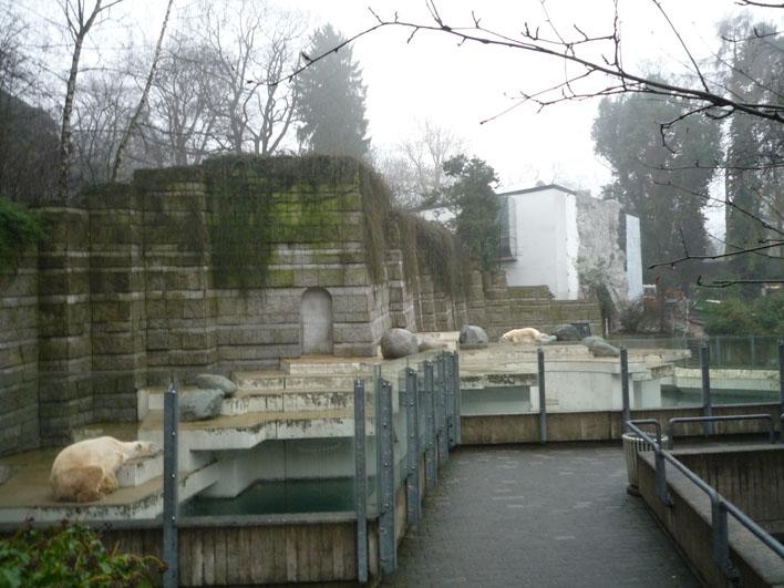 Deutschland-Zoologischer Garten Wuppertal_a0091329_20121372.jpg