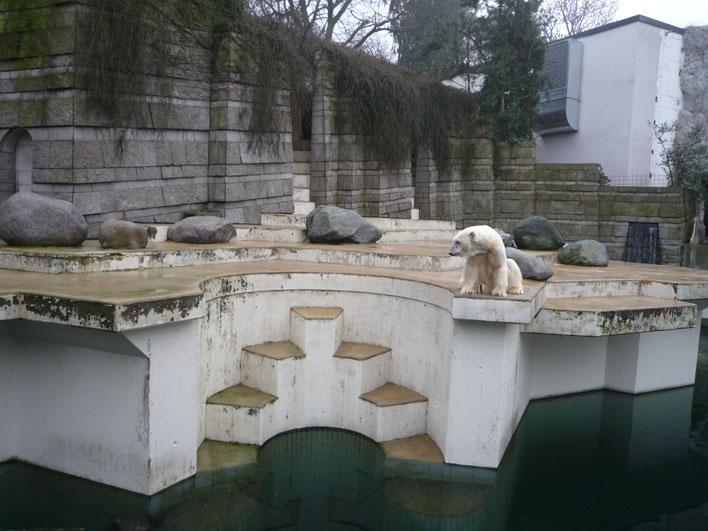 Deutschland-Zoologischer Garten Wuppertal_a0091329_20122334.jpg