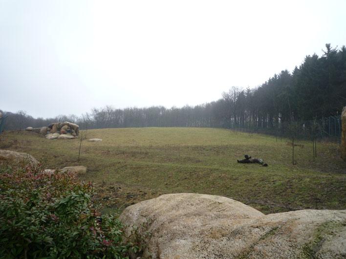 Deutschland-Zoologischer Garten Wuppertal_a0091329_20124132.jpg