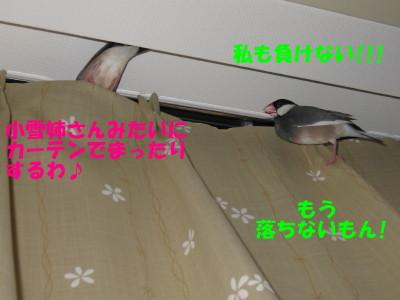 b0158061_2120461.jpg