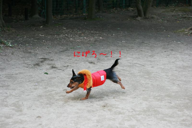 b0123371_2037201.jpg