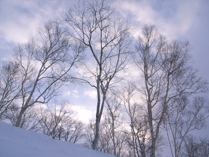 北海道_f0201310_11472141.jpg