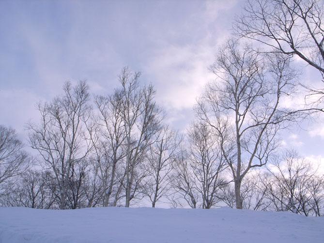 北海道_f0201310_11563132.jpg