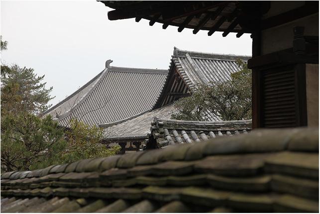奈良へ。奈良へ。_c0042324_13105490.jpg