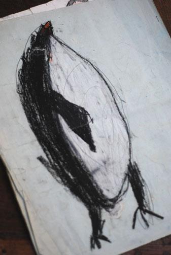 ラッピングペーパー&ペンギンの話_f0179528_1036528.jpg