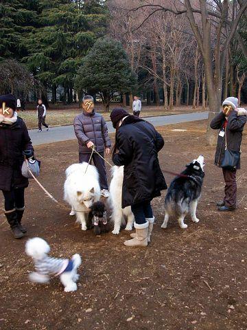 成人の日のおっきな公園_c0062832_1720185.jpg
