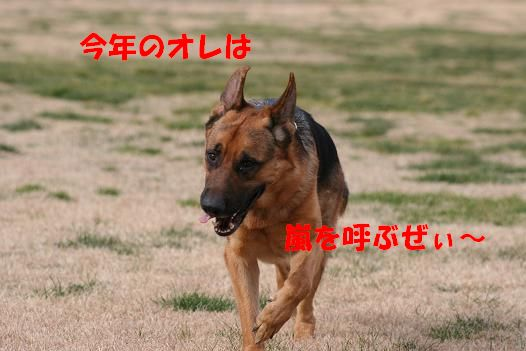 c0192541_21301823.jpg