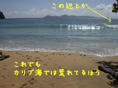 b0138450_6234861.jpg