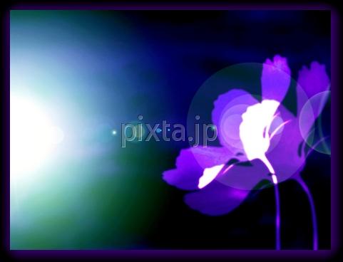 b0161652_7291984.jpg