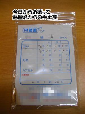 d0020869_1601598.jpg