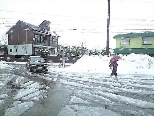 また雪だ!_c0092877_10455080.jpg