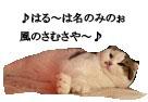c0201577_22474259.jpg