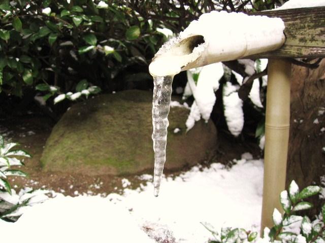 2010年1月13日_f0207707_1659402.jpg