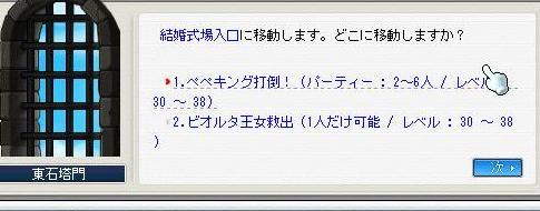 新パッチ(・´ω`・)_e0024628_23321632.jpg