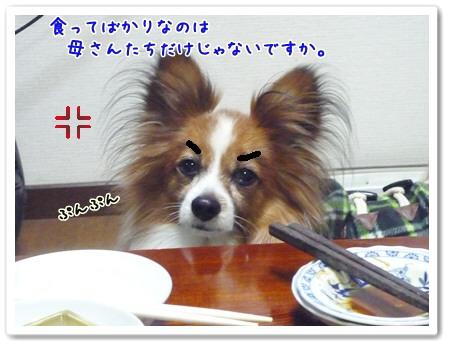 d0013149_112219.jpg
