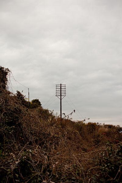 2010/01/13 根府川散歩 その2_b0171364_0461144.jpg