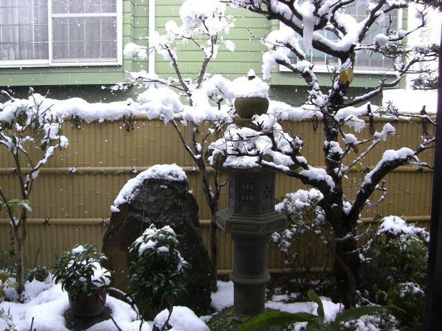 わぁ〜い雪だぁ!!!_d0052485_10114266.jpg