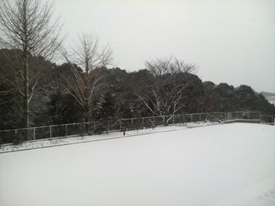 福岡は雪の一日でした。_e0188087_21304140.jpg
