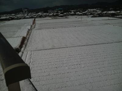 福岡は雪の一日でした。_e0188087_2133572.jpg