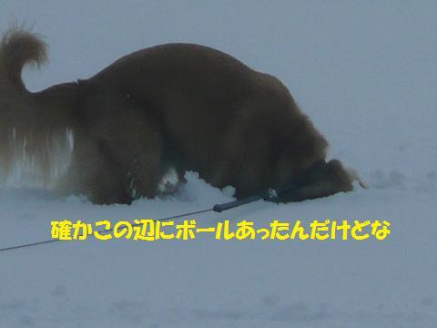 f0114128_22175086.jpg