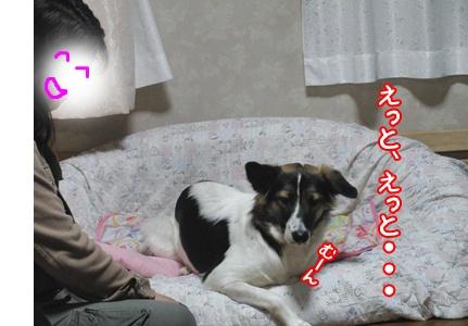 b0185650_141685.jpg