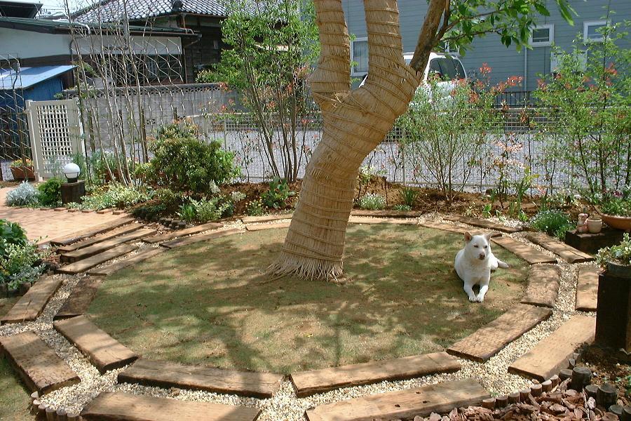 百日紅の庭からさようなら_a0107574_12493940.jpg