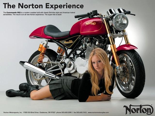 NEW NORTON_b0132101_17451799.jpg