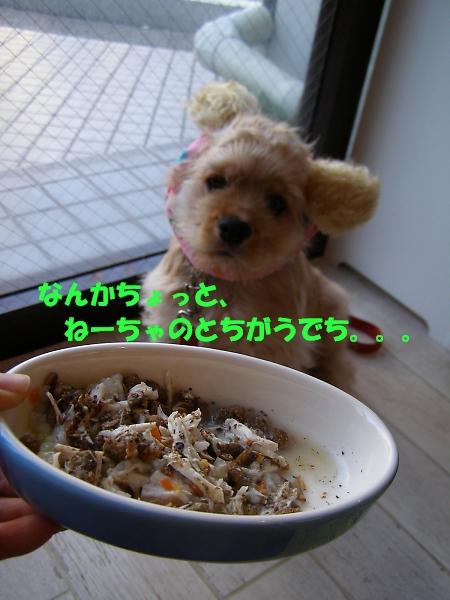 b0067012_19492768.jpg
