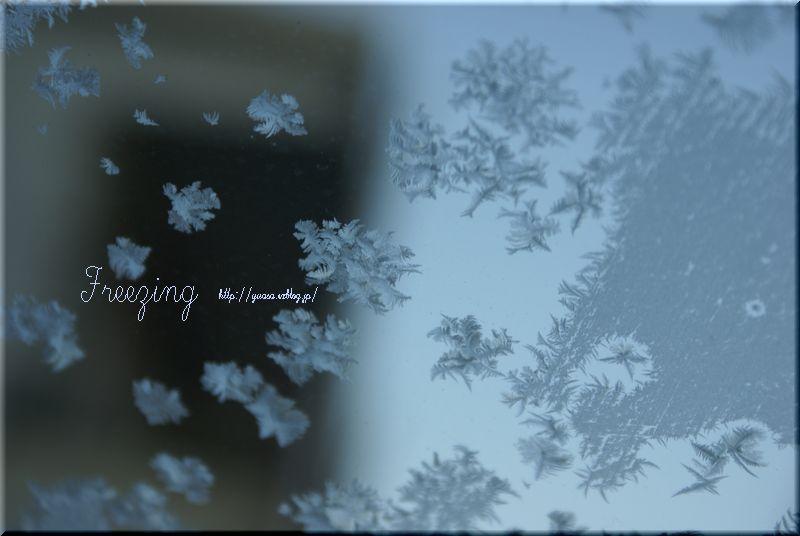 氷結Ⅱ_f0156117_17122294.jpg