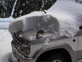 雪_a0131525_0471892.jpg