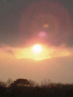 日食見てきました!_f0186726_21131859.jpg